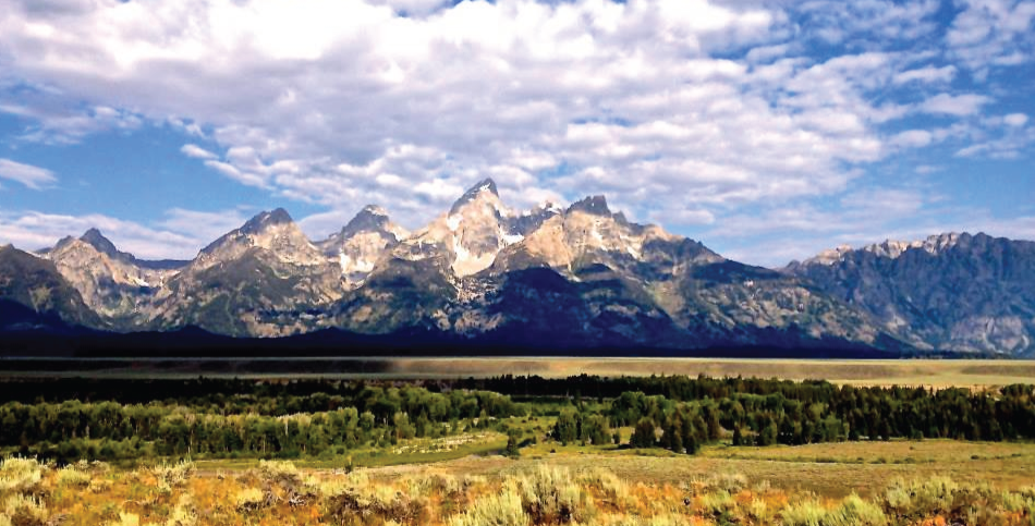 Jackson Hole Website Design