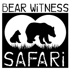 bear witness safari