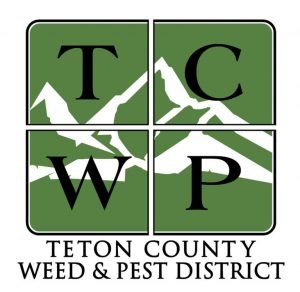 Outdated TCWP logo